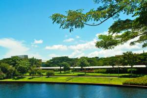 A 300-acre beautiful lakeside campus of the Curtin University Sarawak