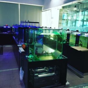 Aquatic Science Lab at UCSI University