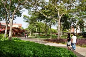 Study in a beautiful 300-acre campus at the top ranked Curtin University Sarawak