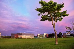 Curtin Sarawak's impressive 300-acre campus opened in 2002, in the suburb of Senadin, in Miri.